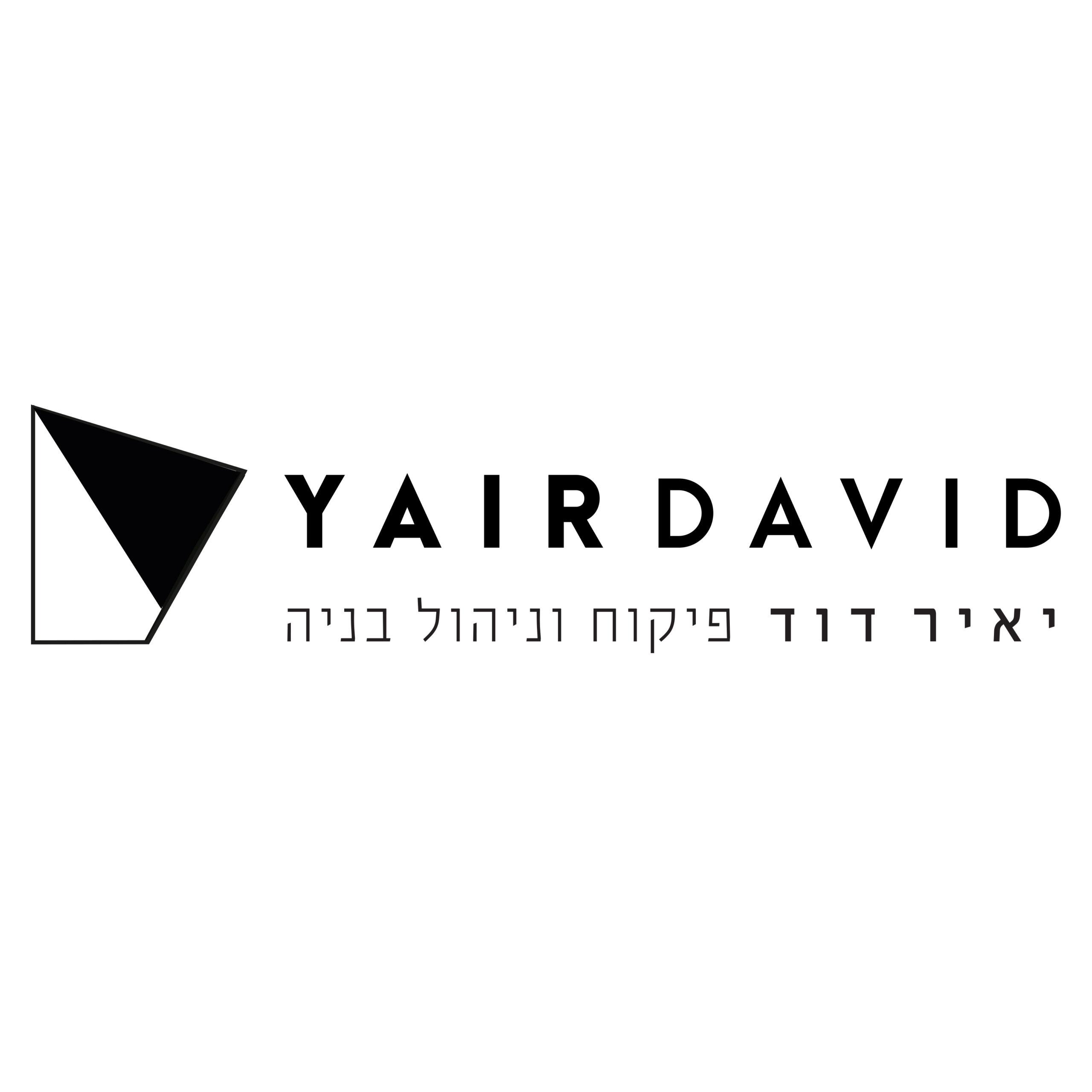 יאיר דוד